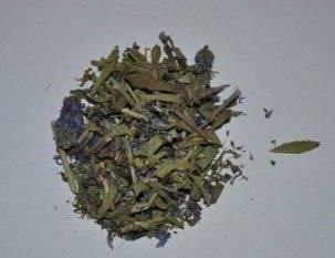 Вероника лекарственная— целебные свойства, применение внародной медицине