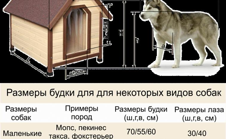 Будка для собаки своими руками: 60 фото, чертеж и инструкции
