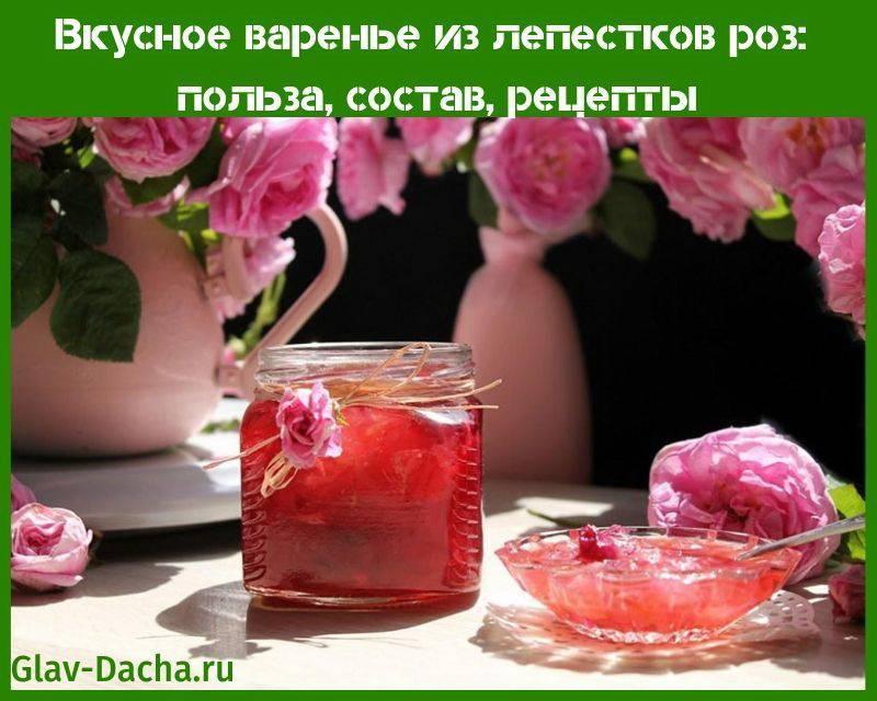 Варенье из лепестков роз — 5 рецептов в домашних условиях