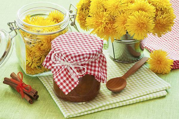 Целебная защита от болезней – мёд и варенье из одуванчиков