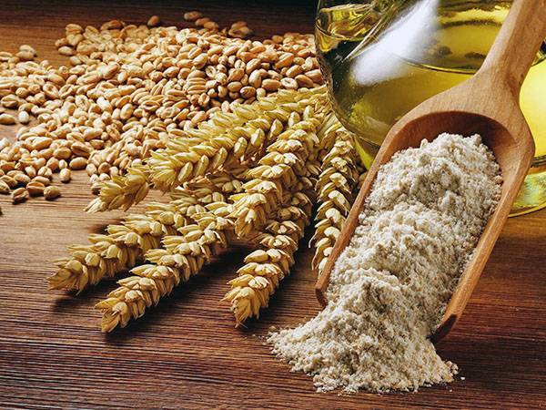 В корочанском районе на полях растят гибрид ржи и пшеницы