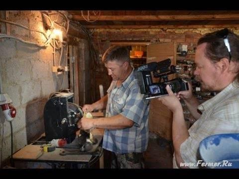Выделка шкур нутрии в домашних условиях: описание процесса обработки