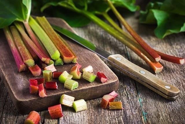 Ревень польза и вред для организма. применение в кулинарии