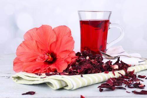 Гибискус чай: полезные свойства и рецепты на его основе