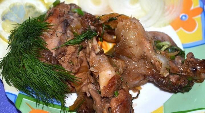 Мясо и жир нутрий – польза и вред