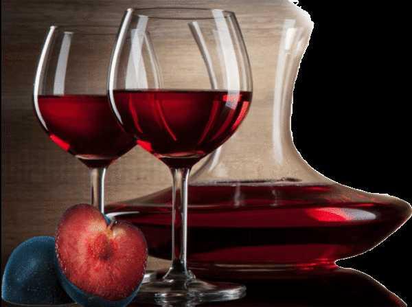 Как сделать вино из сливы в домашних условиях. рецепты приготовления домашнего вина из слив пошагово с фото
