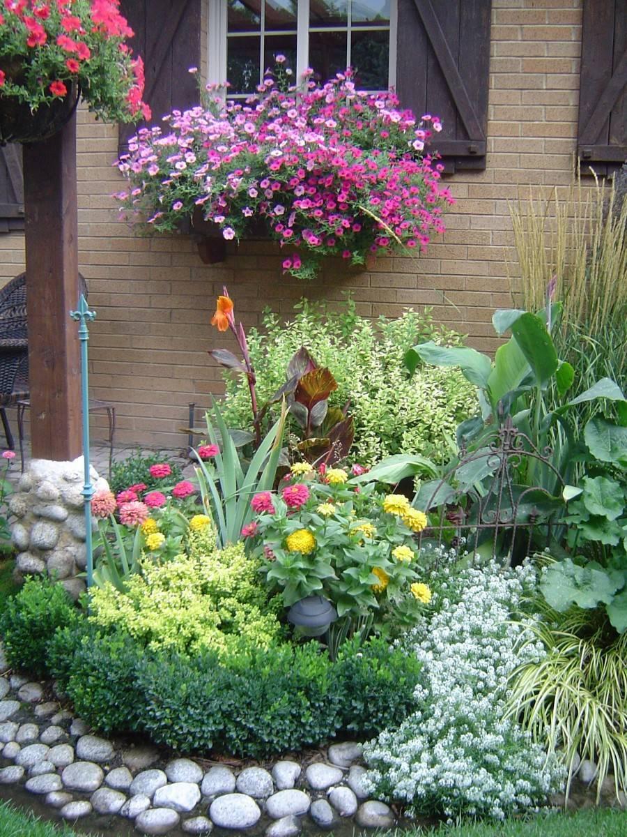 Схема цветника, цветущего всё лето