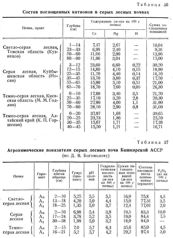 Почвенный покров россии