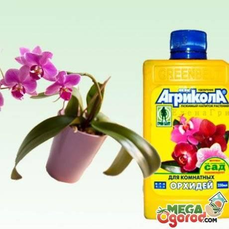 Удобрение агрикола — комлексное удобрение на все случаи