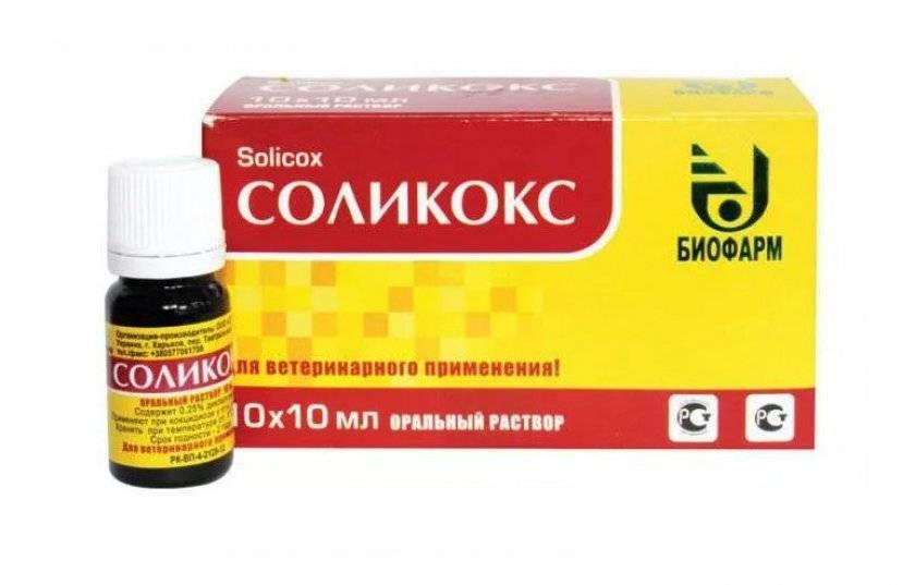 Лечение кокцидиоза. лекарственные препараты для кур: