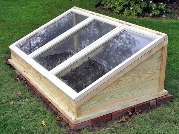 Строим холодный парник для садовых растений
