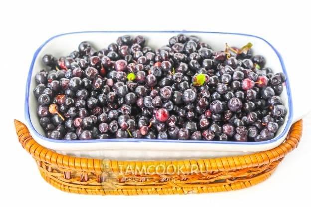 Заготовки из черники на зиму: варенье, джем, мармелад, компот. рецепты заготовок из черники с сахаром и в собственном соку