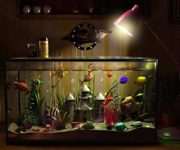 Правильное освещение для аквариума