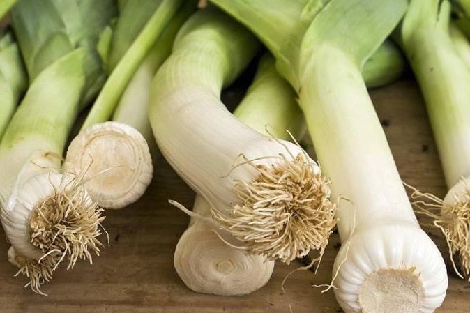 Польза лука для здоровья – факт или вымысел?