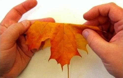Букет цветов из листьев клена
