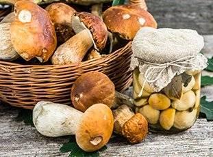 Белые грибы на зиму: как приготовить и правила хранения. лучшие рецепты
