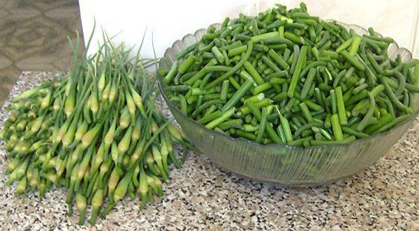 Зеленый чеснок на зиму. рецепты и заготовки. как сделать чесночную пасту на зиму из чеснока?