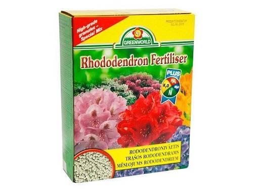 Чем подкормить гортензию для обильного цветения