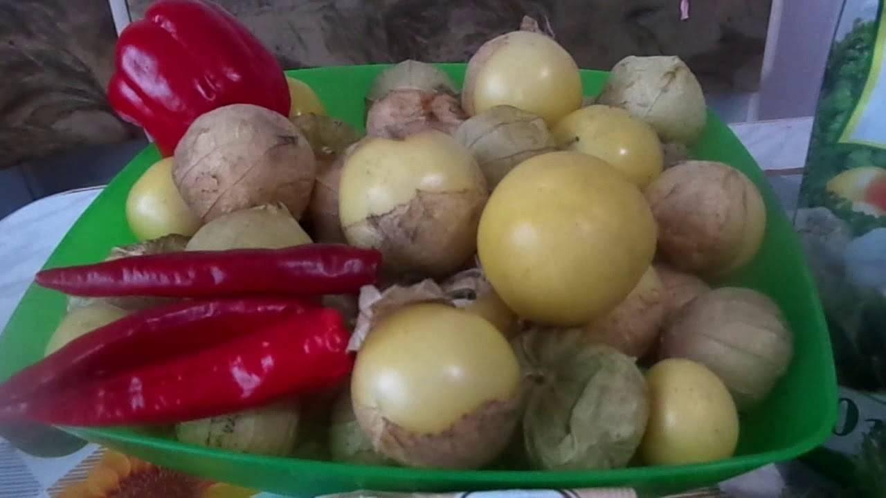 Физалис овощной рецепты приготовления на зиму блюда чем полезен фото