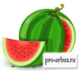 Арбуз ягода или нет