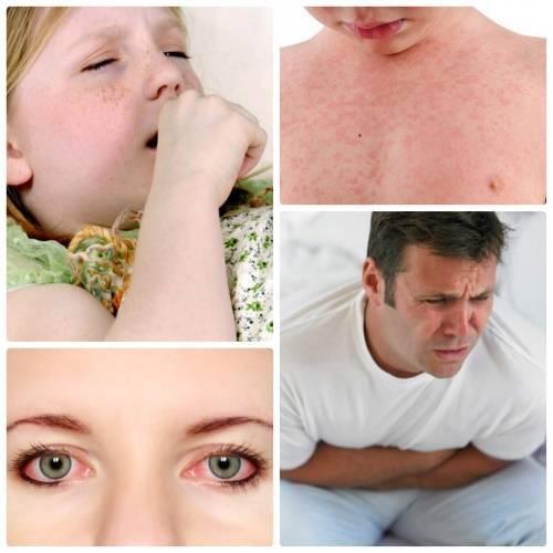 Как вылечить аллергию на амброзию