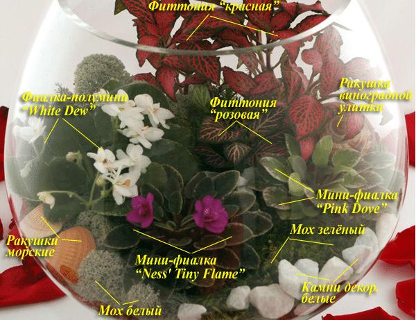 Как сделать мини-сад в цветочном горшке своими руками