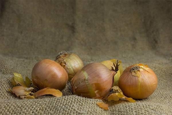 Луковая шелуха — польза и вред для организма, рецепты народной медицины