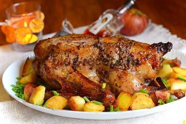 Как приготовить утку в рукаве. лучшие рецепты утки, запеченной в рукаве