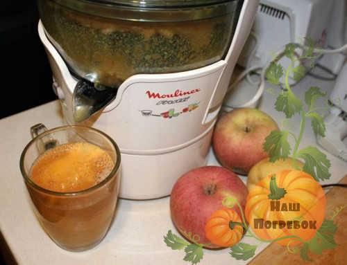 Особенности изготовления фруктовых соков в домашних условиях