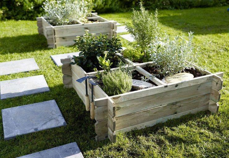 Какой должна быть оптимальная ширина грядки на огороде?
