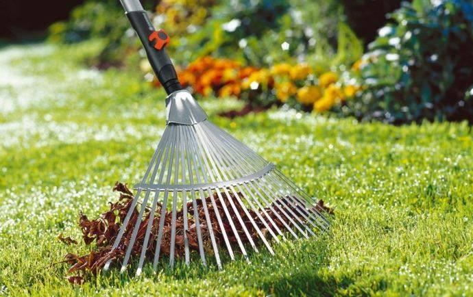Что такое скарификация газона. уход за газоном осенью: аэрация, скарификация, подкормка