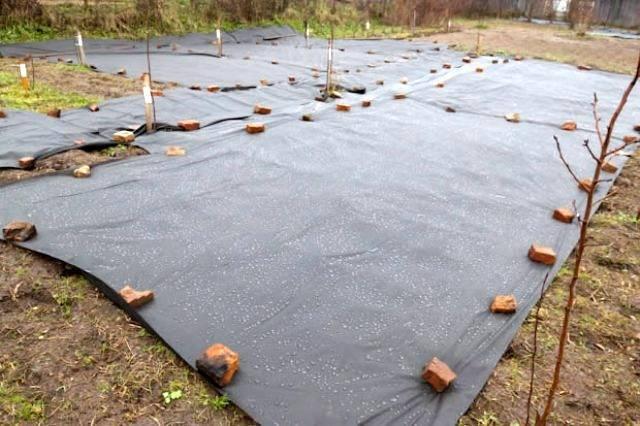 Сеялка для газона — ручная и механизированная модель видео