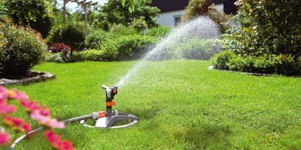 Дождеватели для полива газона: как подобрать оптимальный