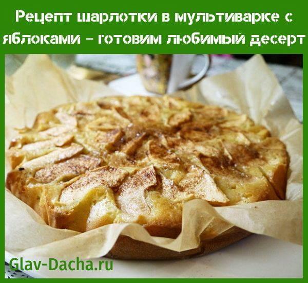Пышная шарлотка с яблоками в мультиварке: советы по приготовлению с фото