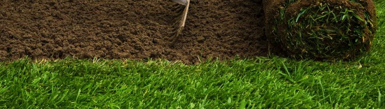 Рулонный газон: технология укладки своими руками