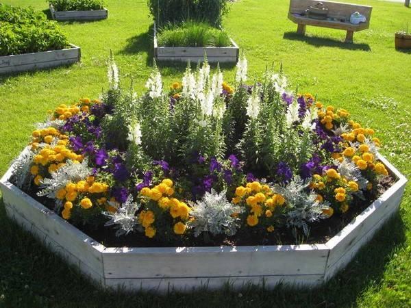 Как сохранить красоту любимых цветников: делаем ограждения для клумб своими руками из подручных материалов