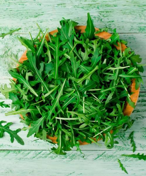 Чем полезна руккола (индау) и может ли трава навредить: свойства и секреты применения