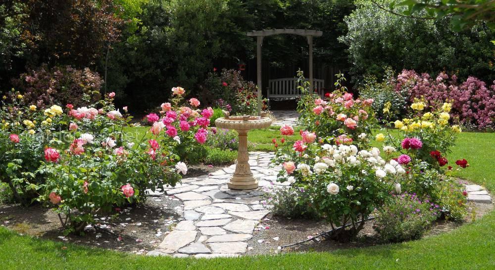 Французский и английский стили садов: выбираем по душе