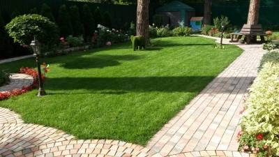 Как стричь газон: 10 главных правил