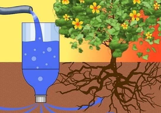 Капельный полив из пластиковых бутылок своими руками — рассказываем по пунктам