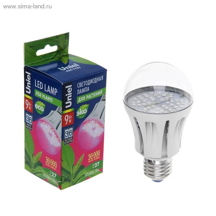 Да будет свет: все способы организовать подсветку для рассады