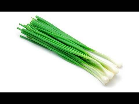 Полезные свойства зеленого и репчатого лука