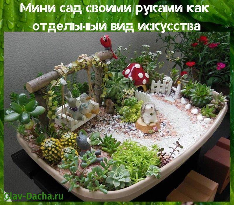 Сад в бутылке своими руками, как сделать мастер класс: фото, видео. прелестные цветы в бутылке для колоритного интерьера бутылочный сад