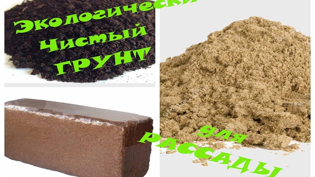 Для выращивания хорошей рассады используем кокосовый субстрат