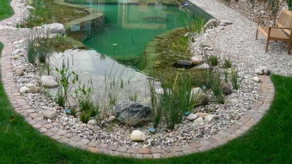 Аэратор для водоема своими руками: как сделать из подручных средств в домашних условиях