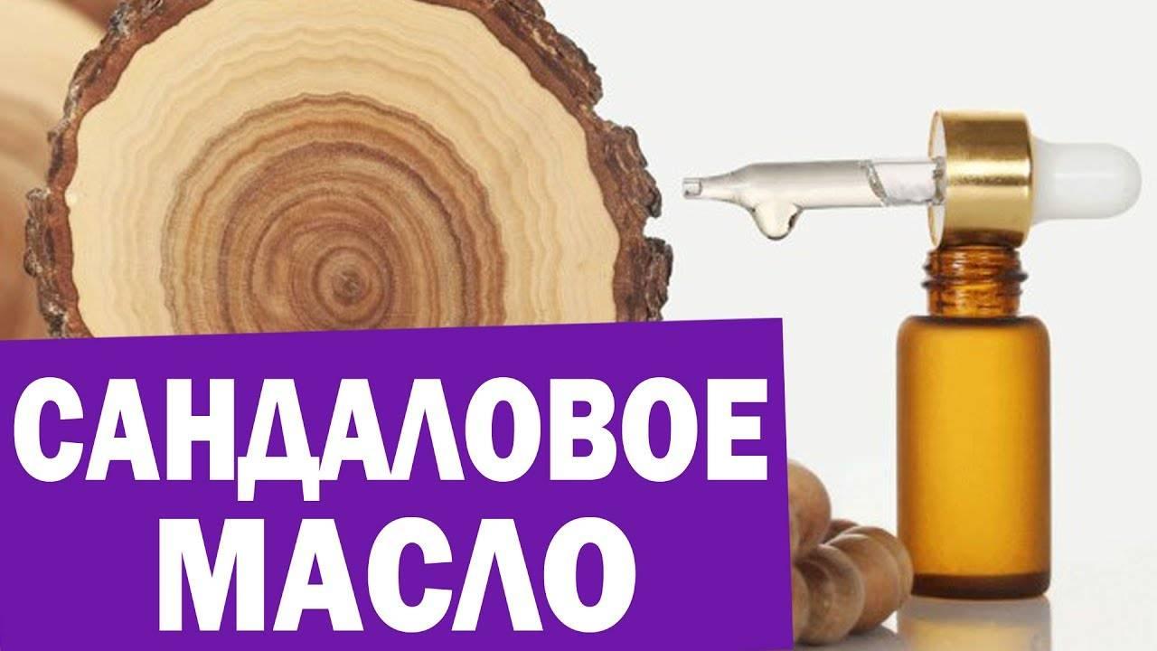 Сандал – магические свойства дерева и использование для лечебных целей