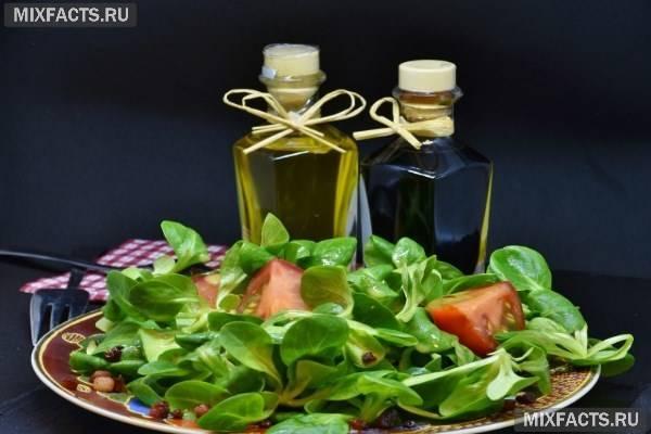 Рапсовый мед — полезные свойства и противопоказания
