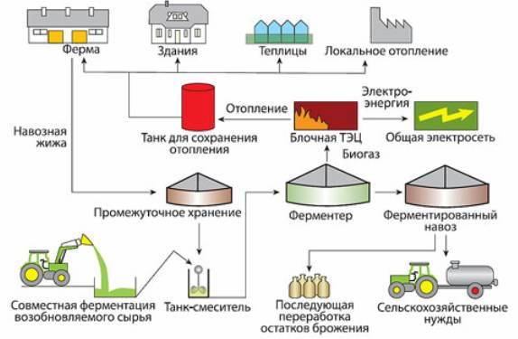 Биогазовая установка своими руками