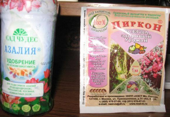 Биопрепараты для защиты растений: виды и способы применения