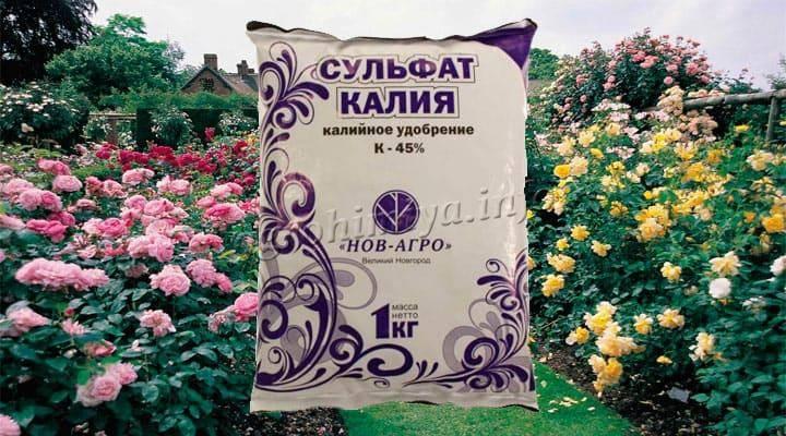 Удобрение сульфат калия (калий сернокислый)